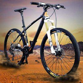 bicicletaForeverAluminio_resized